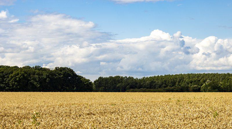 Respect voor de boerinnen en boeren